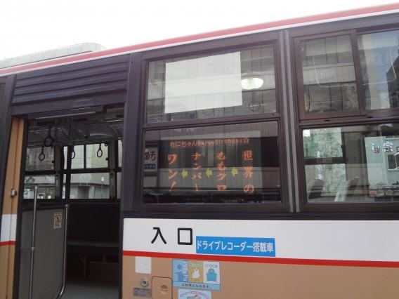 DSC02453